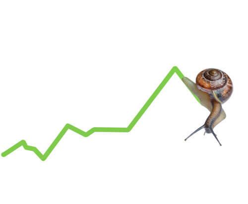 financial-slowdown-snail-2-IC System