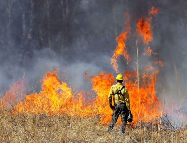 state-budget-wildfires-IC System