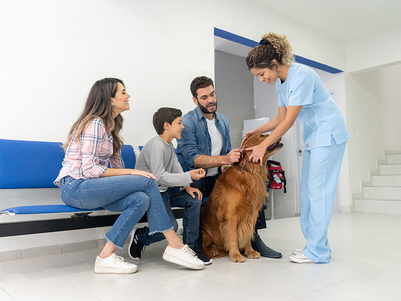 A vet interacts with a family and their dog